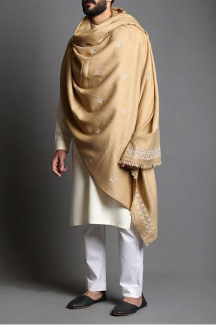 Picture of Embroidered Motif Pashmina Shawl
