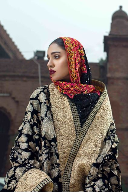 Picture of Formal Gold Border Velvet Shawl