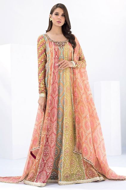 Picture of Printed Embellished Peshwas